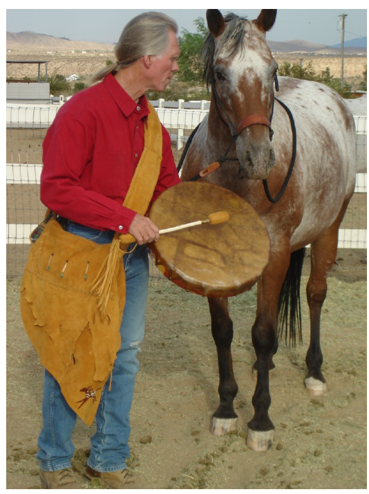 Horses on White Horse Rescue Ranch Love Drums